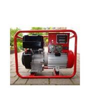 Elektrocentrála Endress ESE 404 SG